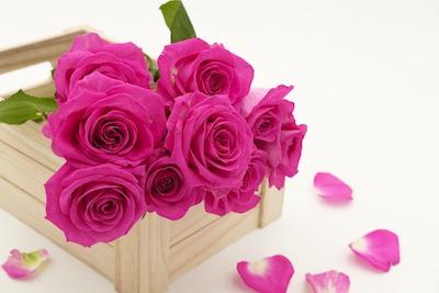 Blumen mit Haarspray haltbarer machen
