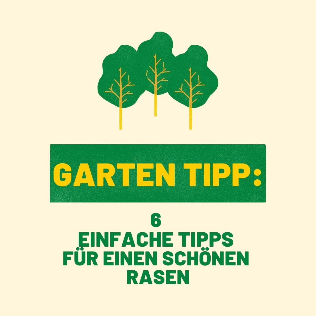 6 einfache Garten Tipps