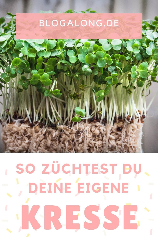 Du kannst Kresse im Innen- sowie im Aussenbereich anpflanzen. Entweder mit oder ohne Erde, ganz wie du möchtest und welche Voraussetzungen du hast. Kresse züchten ist nicht schwer! #kresse #garten #balkon #gartentipp #blogalong